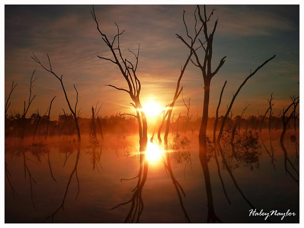 Sunrise or Sunset by Hazeinthehills1