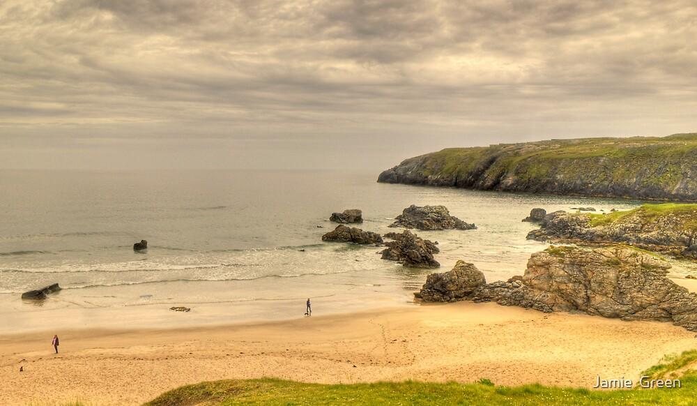 Walkies On A Scottish Beach by Jamie  Green