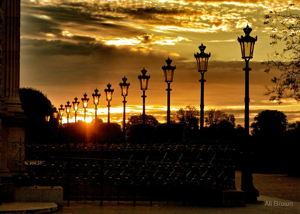 The City of Lights...Paris by Alison  Brown