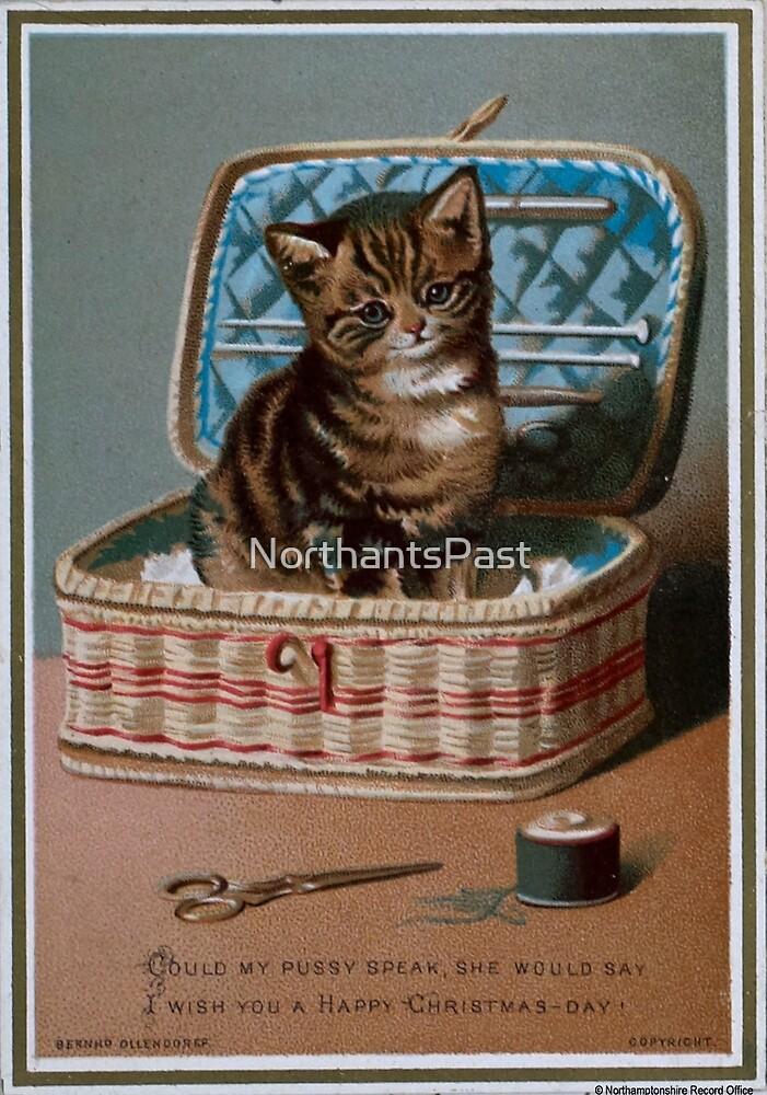 Victorian Christmas card - kitten by NorthantsPast