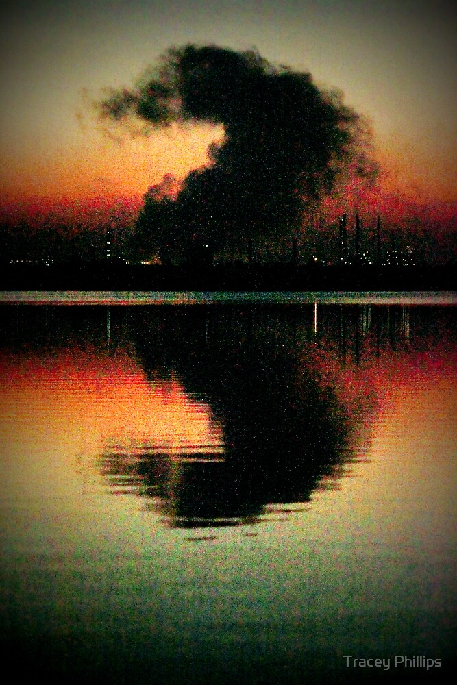 Pretty Pollution 3 by Tracey Phillips