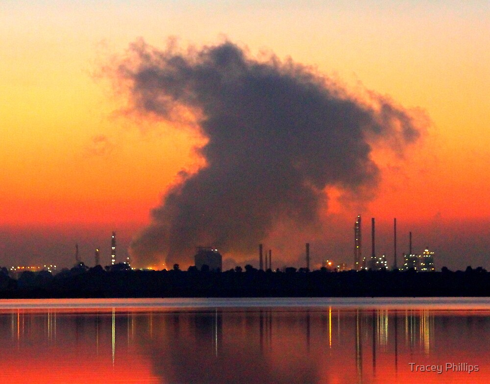 Pretty Pollution 4 by Tracey Phillips