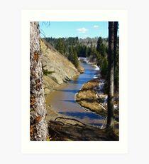 Creek in Early spring Art Print