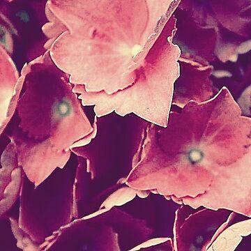 Purple Flowers by ashleyschex