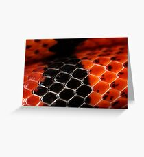 Scutes in red and black Greeting Card
