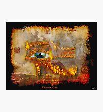 Desert Fire Photographic Print