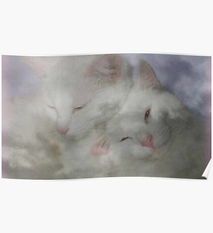 Cats In The Clouds Poster