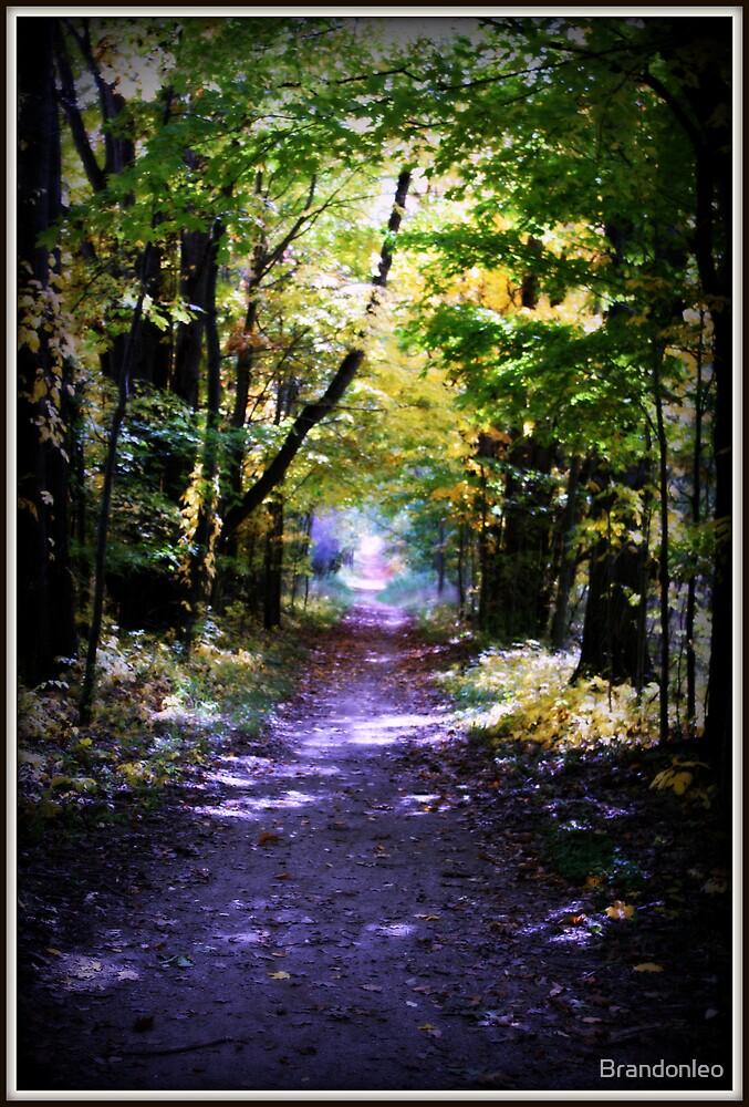 The Trail by Brandonleo