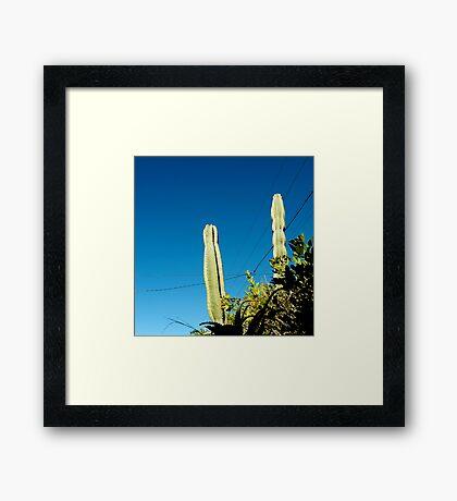 you're cactus Framed Print
