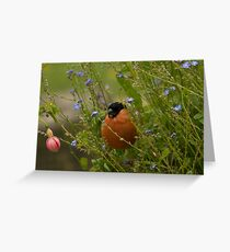 Bullfinch male Greeting Card