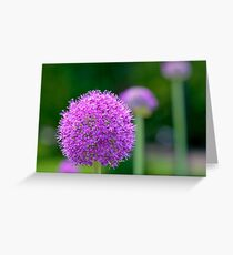 Perfect Purple Greeting Card