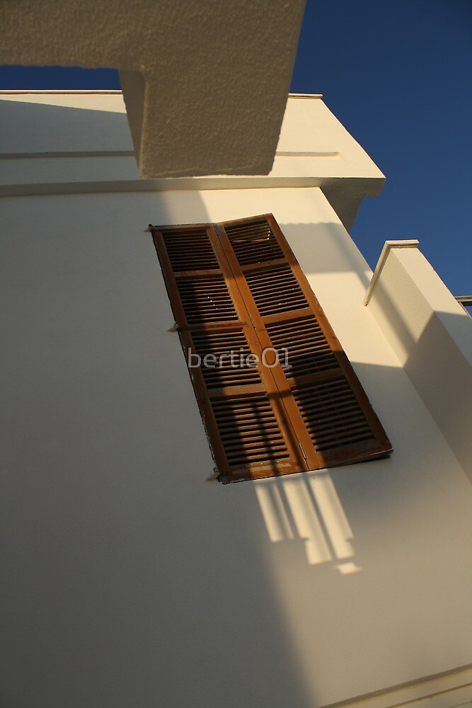 Morning Sunlight by bertie01