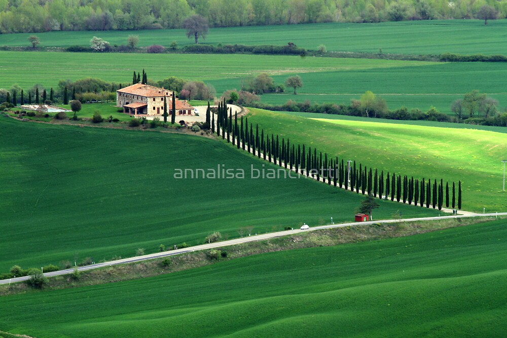 Val d'Orcia by annalisa bianchetti