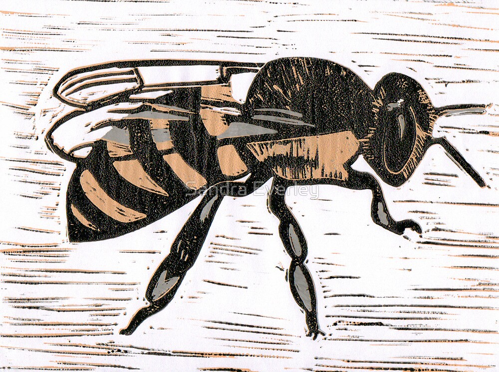 Bee by Sandra Everley