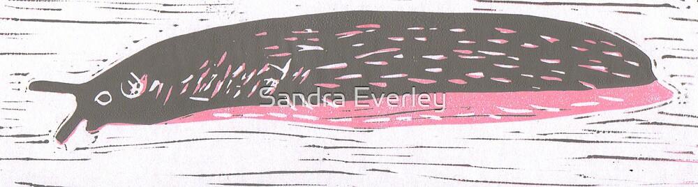 Slug by Sandra Everley