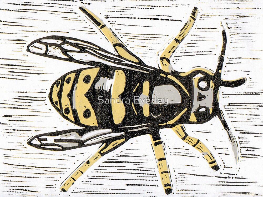 Wasp by Sandra Everley
