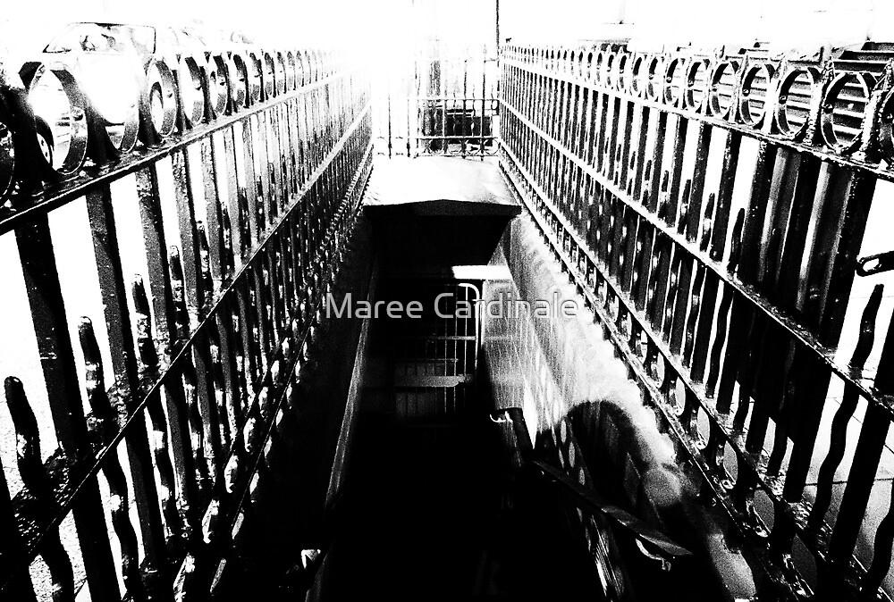 gateway to the netherworld by Maree Cardinale