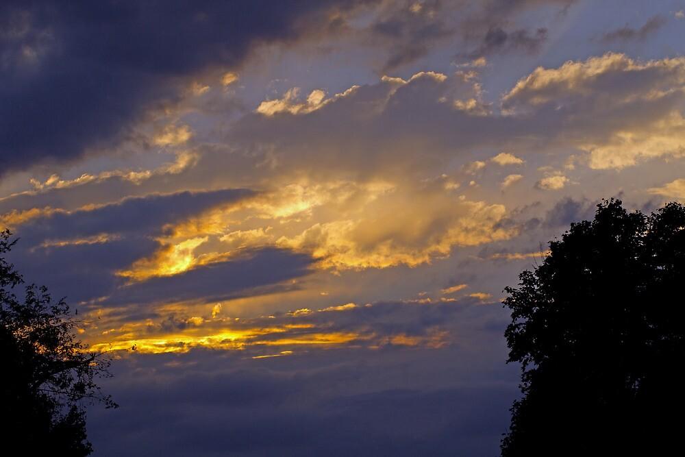 Storm Approaching by Lynn Gedeon