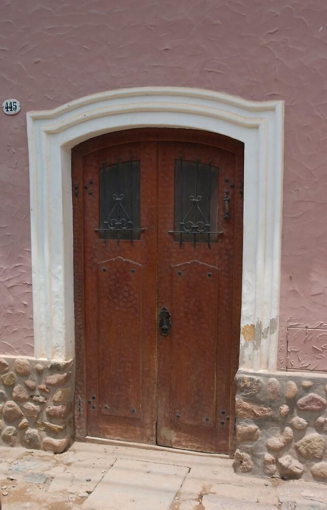 DOOR 11 by gus72