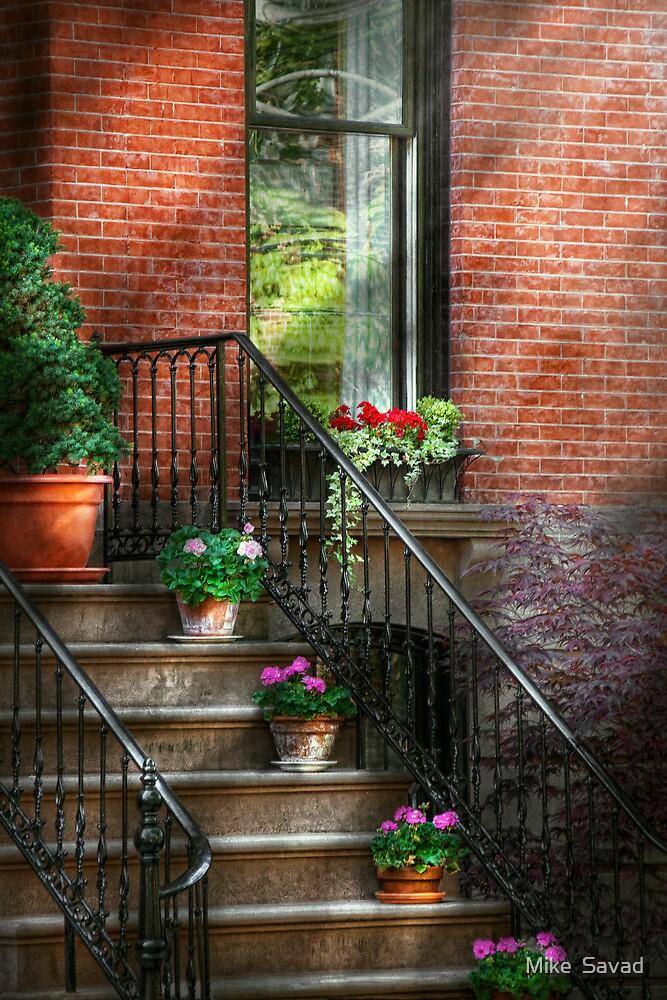 Spring - Hoboken in Spring by Michael Savad