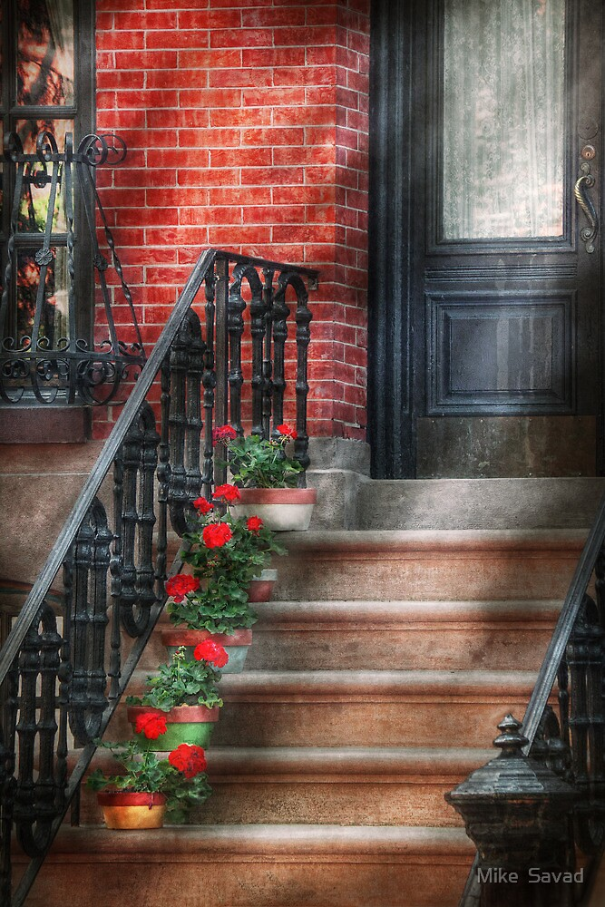 Spring - Porch - Hoboken, NJ - Geraniums on stairs by Michael Savad