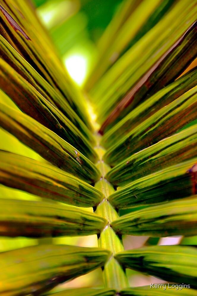 Palm closeup by Kerry Loggins