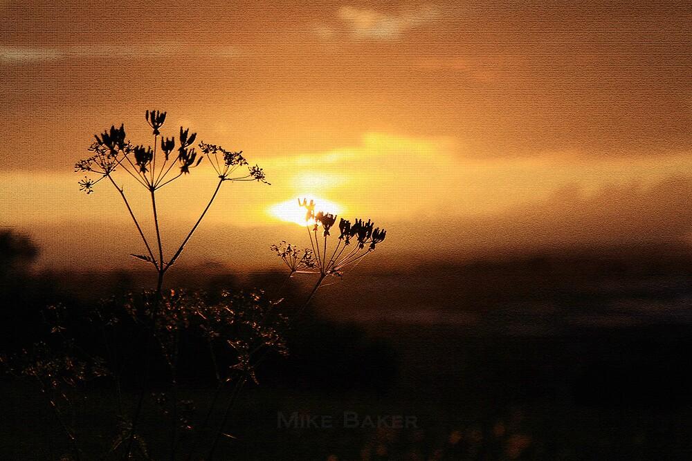 Farley Hill by Michael Baker