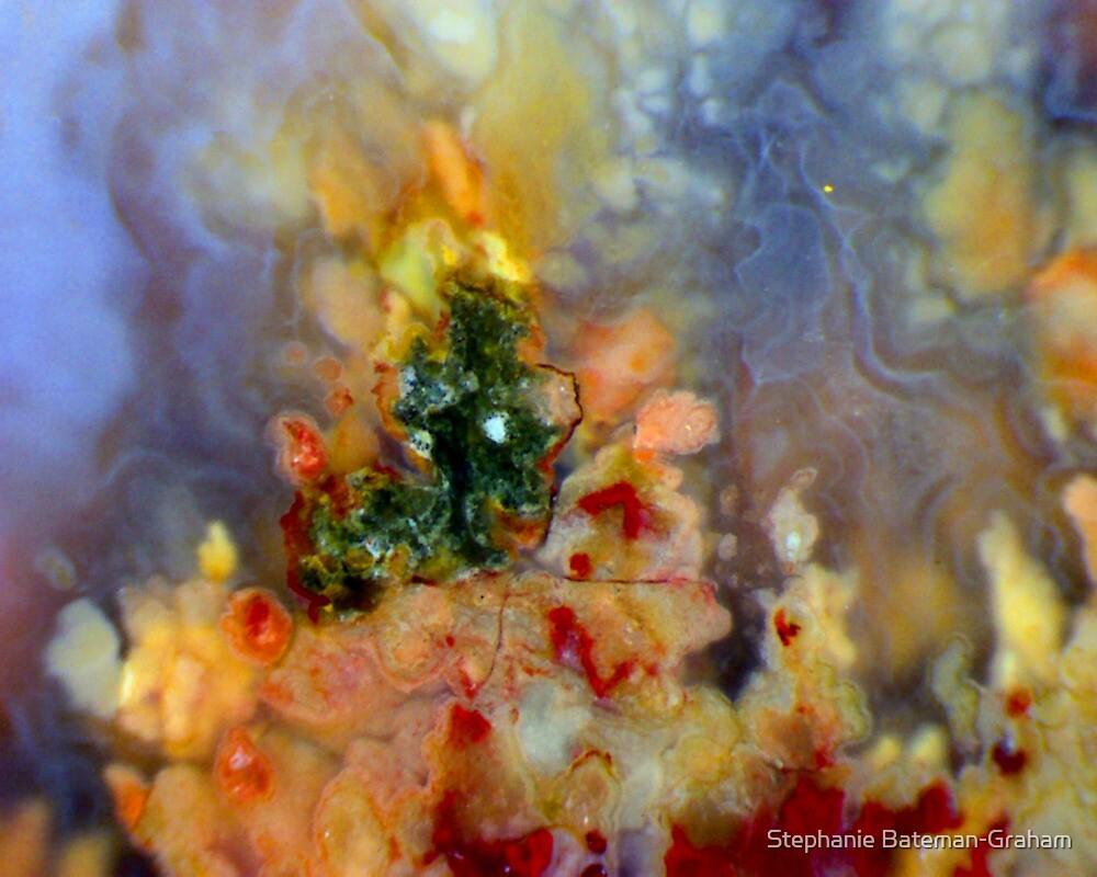 Christmas On Fire by Stephanie Bateman-Graham