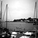 NeinGrenze - Harbour b&w by OLIVER W