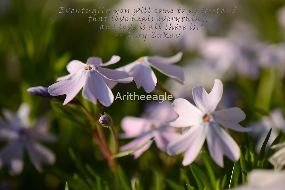 Love Heals by Aritheeagle