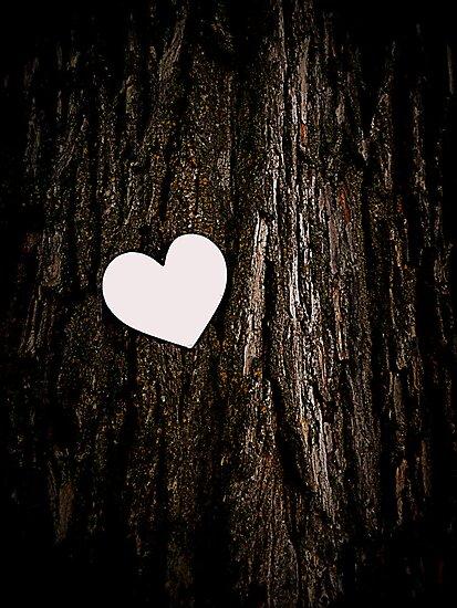 Heart & Tree by Amanda Vontobel Photography/Random Fandom Stuff