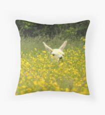 Llama basking amongst the buttercups Throw Pillow