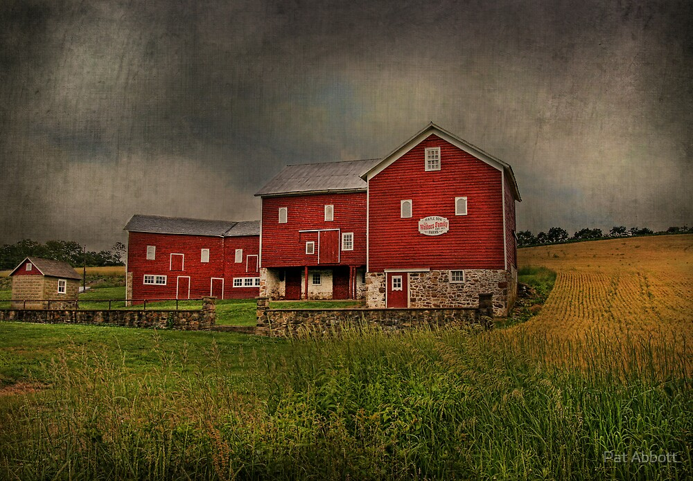 Maple Row Farm by Pat Abbott