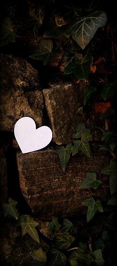 Heart in Ivy by Amanda Vontobel Photography/Random Fandom Stuff