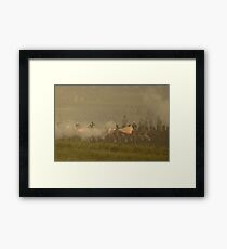 British Line Infantry Framed Print