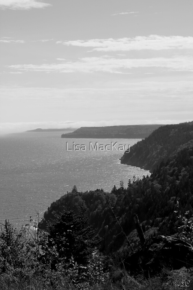 Fundy Trail Coast Line.. by Lisa MacKay