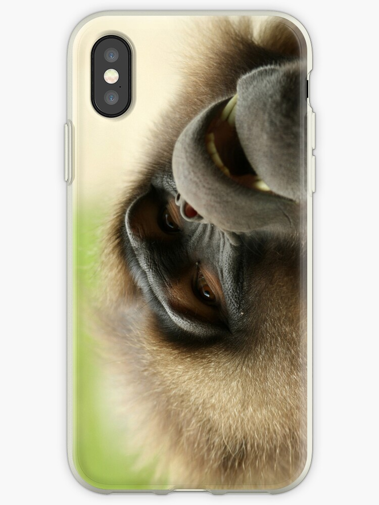 Baboon iPhone Case by WDaRos714