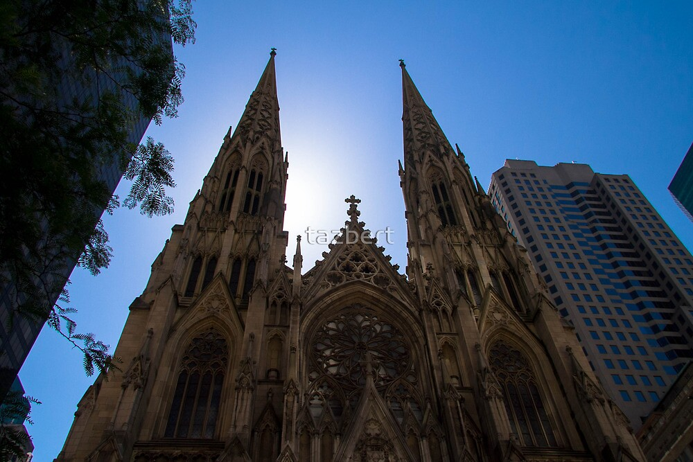 Morning sun on St. Patrick's Cathedral by tazbert