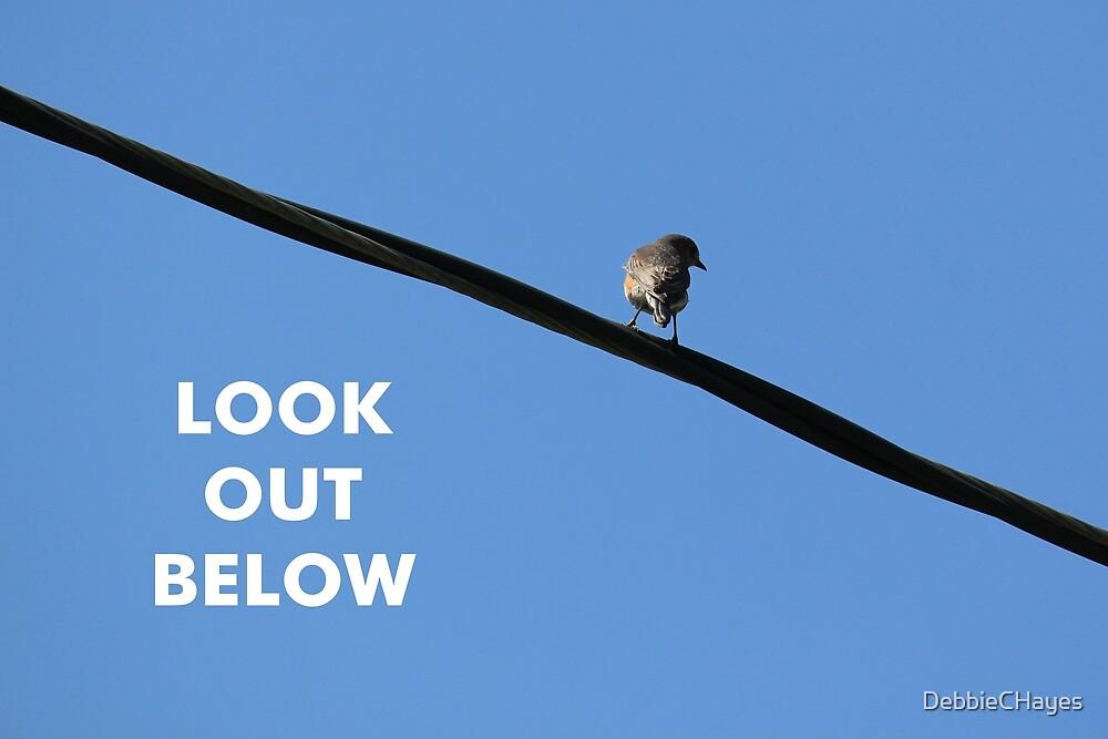 Look Out Below by DebbieCHayes