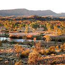 Finke River - Central Australia by Lyn Fabian