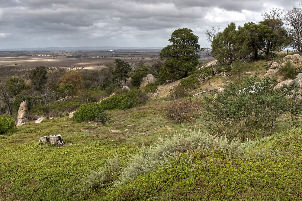 You Yangs - Near Geelong by Colin  Ewington