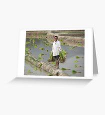 Planting Rice in Rural Laos Greeting Card