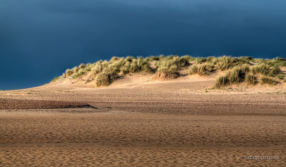 DUNE by timmburgess
