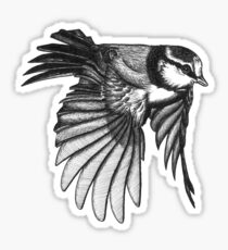 Don't Be Afraid To Fly Sticker