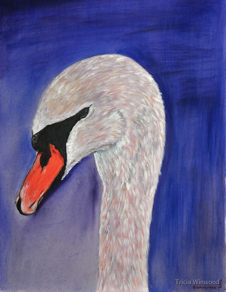 Swan by Tricia Winwood