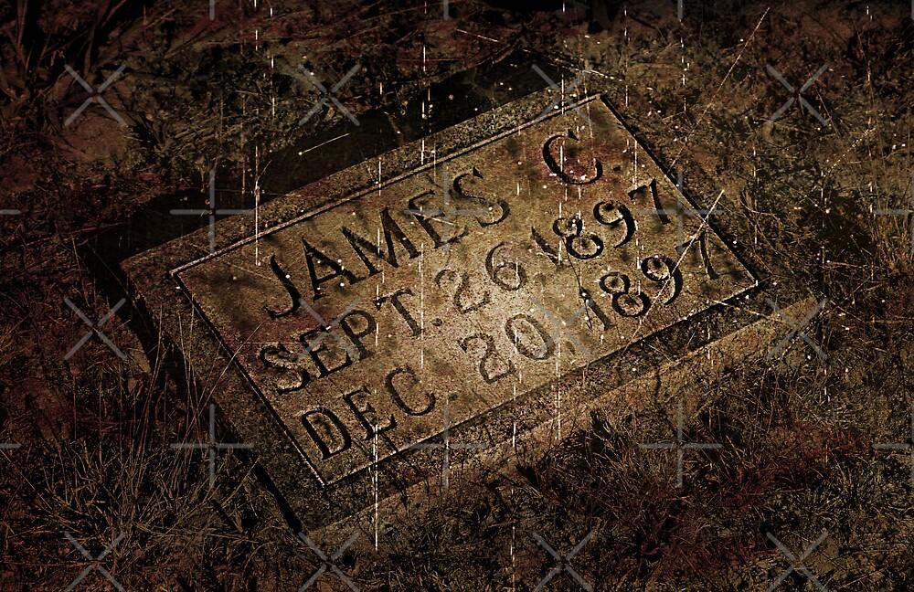 James C. by Scott Mitchell