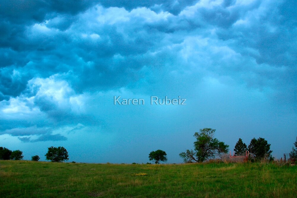 Incoming Storm by Karen  Rubeiz