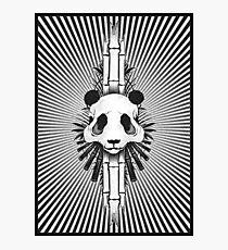 Bamboo Bones Photographic Print