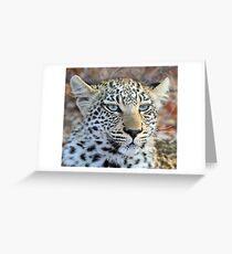I am a pretty blue eyed leopard cub ! Greeting Card