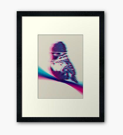 Bird Hair Day Framed Print
